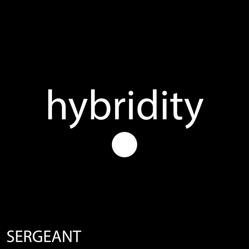 hybridity.jpg