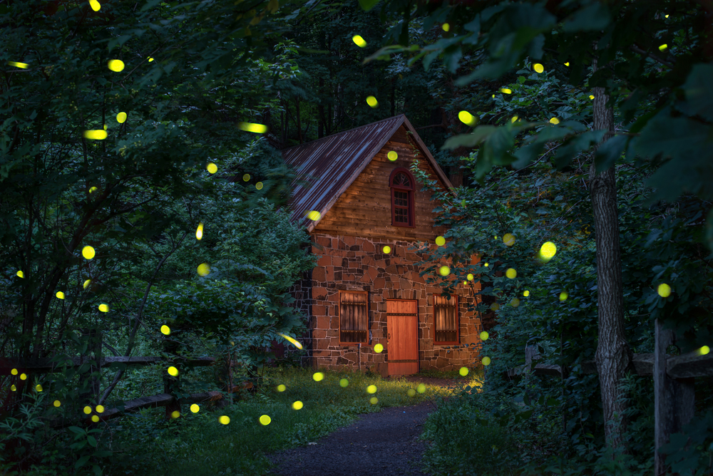 Fireflies Cabin Brighter.jpg