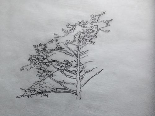 agate sketch.jpg