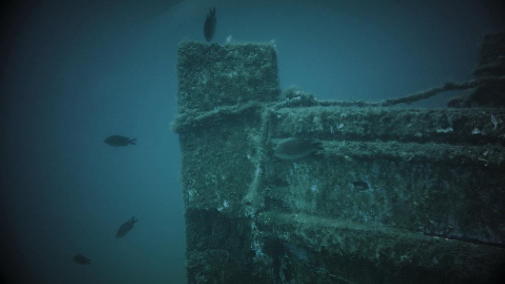 diving_1.5.1.jpg