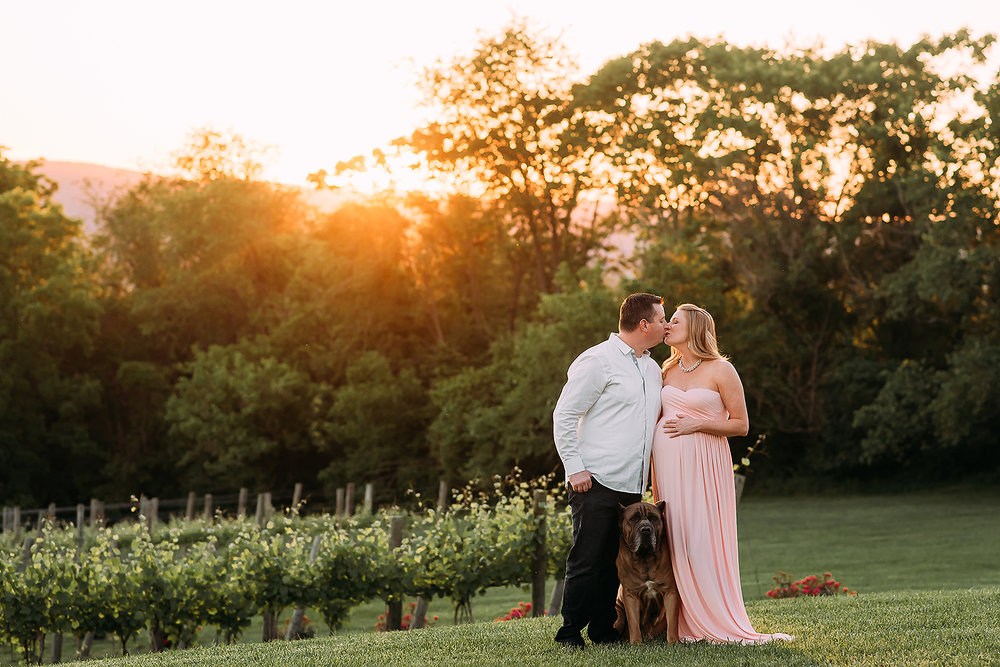 sunset maternity session in vineyard with dog baltimore maternity