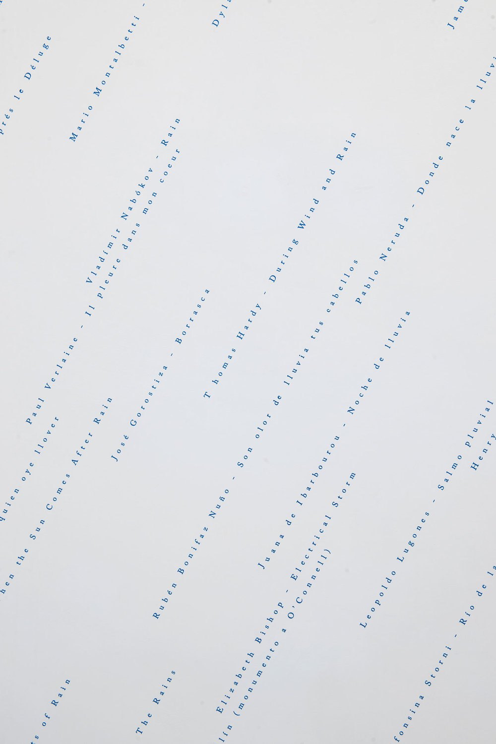 Está lloviendo (una antología) / It's Raining (An Anthology),   2017  Vinil / Vinyl  Dimensiones variables / Dimensions variable  Detalle / Detail