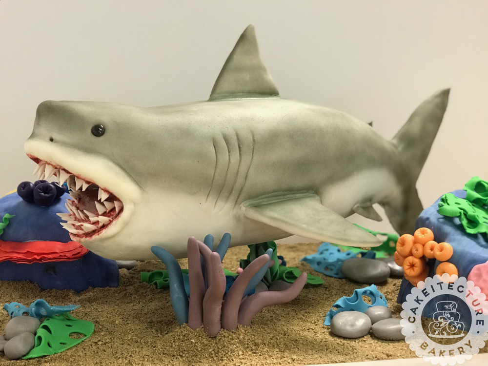 Cakeitecture Bakery Shark cake.png
