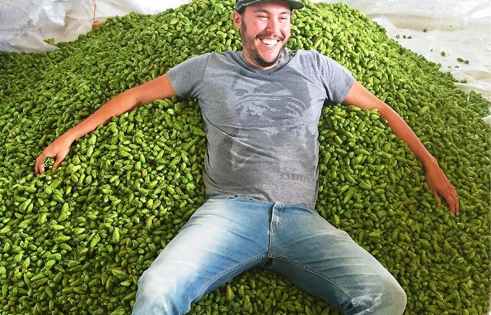 Justin in a pile of our fresh hops