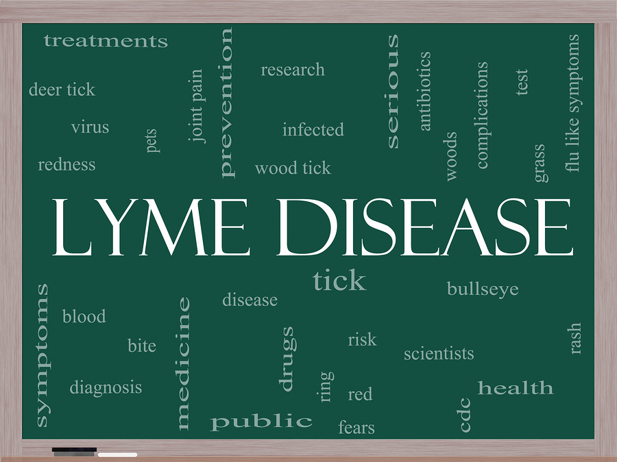 lyme disease presentation Dr Kenneth Bock Woodstock