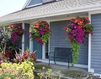 porch baskets.jpg