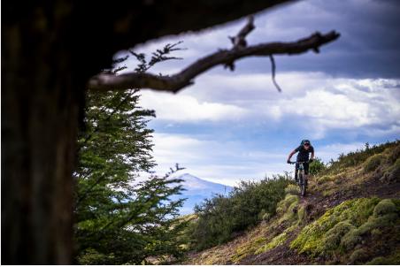 2018 Stumpjumper: Shred the trails -