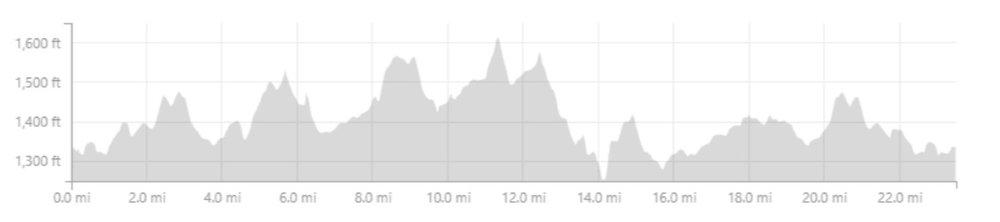 typical elevation.jpg