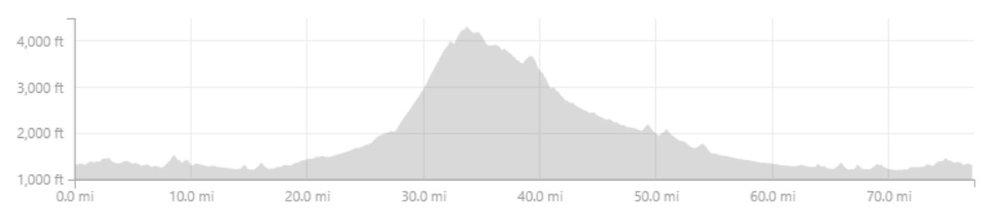 Road Day elevation.jpg