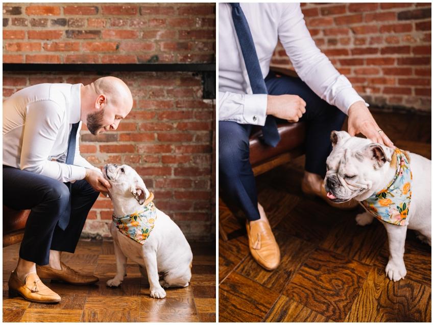 rover-boutique-dog-bandana-urban-row-photo_0008.jpg