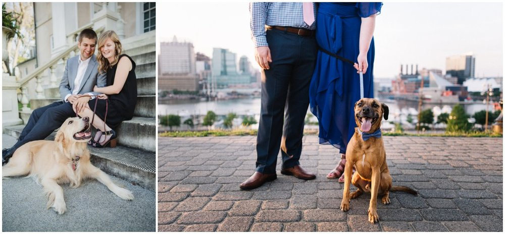 urban-row-photo-dog-engagement-photos_0007.jpg