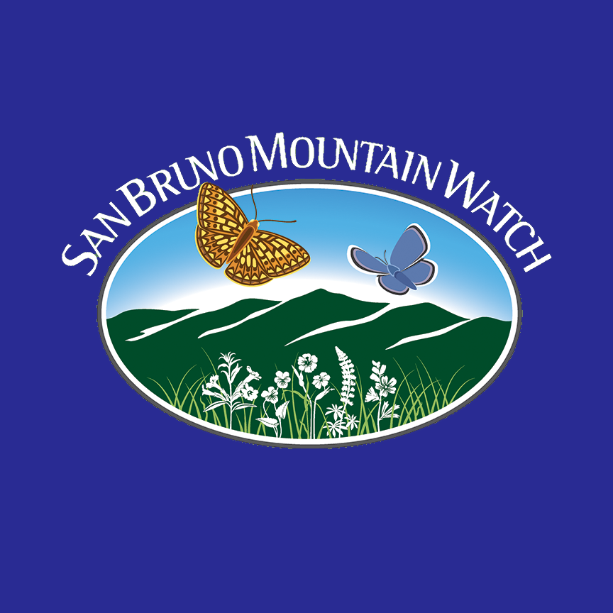 San Bruno Mountain Watch - Services included rebranding, website design, grant writing, press release writing and management, fundraising, outreach, social media, video production, and photography. Donations increased 110% over one year, and social media followers increased by 70% over three years. Heart's Eye's grant proposals raised over $40,000 for San Bruno Mountain Watch.
