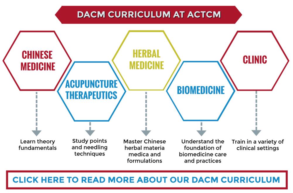 DACM-Curriculum.png
