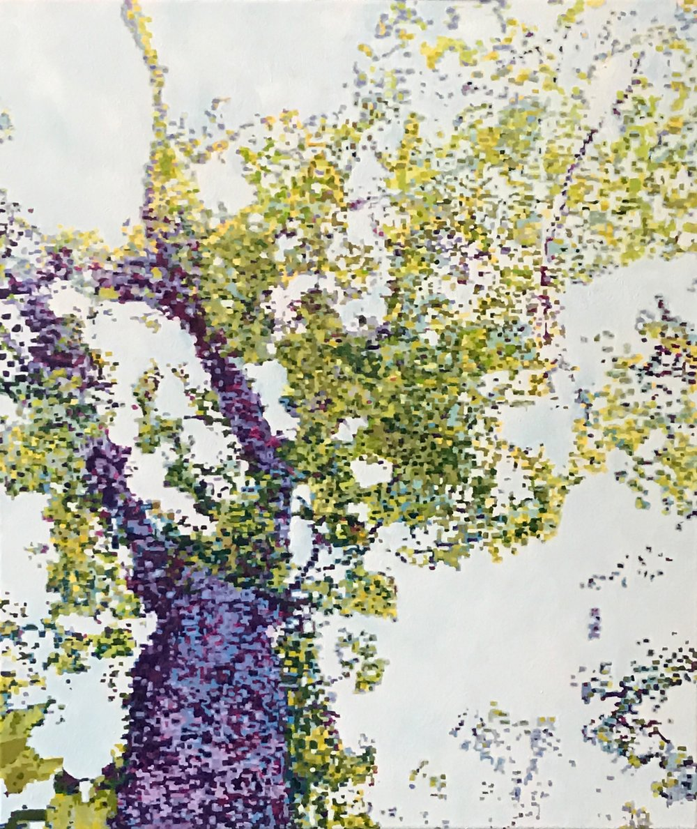"Baobab, Oil on Linen, 24"" x 28"", 2016 (Sold)"