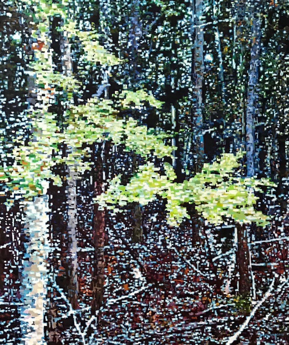 "Digital Forest Scene II, 22"" x 26"", 2016"