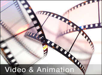 Video & Animation
