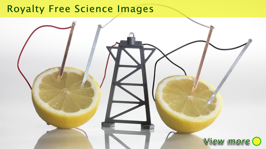 Electrical circuit with lemons. A chemical reaction between the copper and zinc plates and the lemon produces a small current, that is able to power a light bulb. Tek Image. Royalty free science images.  Images © Science Source