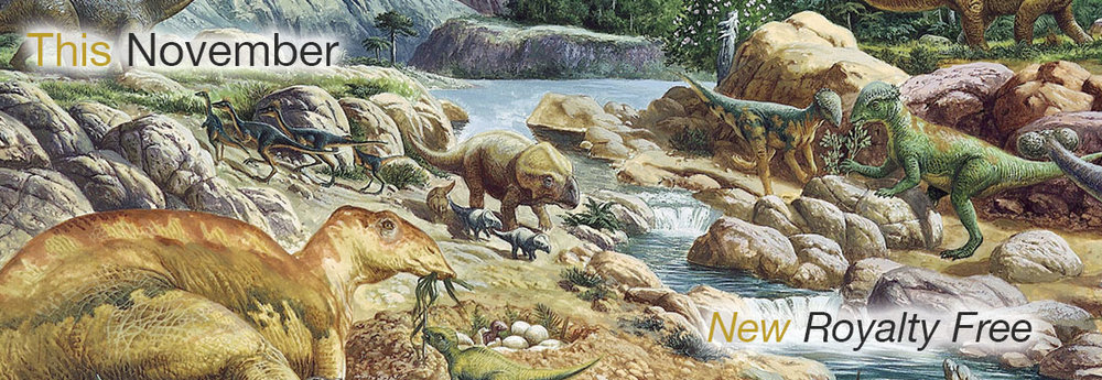 Website-slides_0002_prehistory.jpg