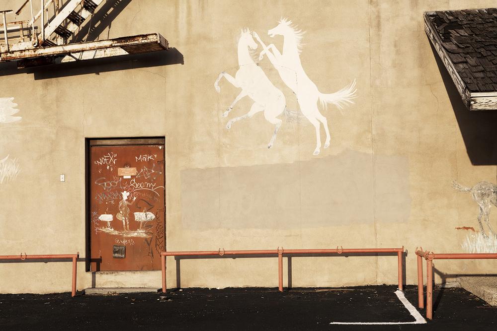 white horse wall dance.jpg
