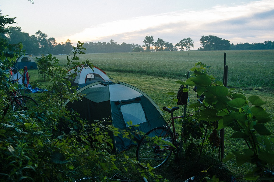Bikeout tents at sunrise.jpg