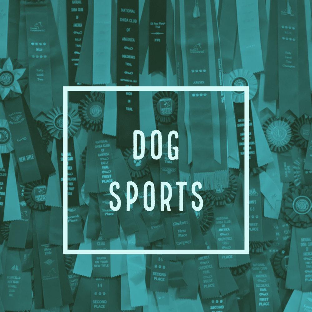 dog sports.jpg