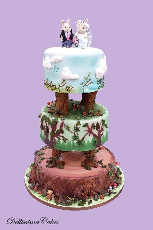 Wedding Cakes Award Winning Retford Cake Maker Dellissima Cakes
