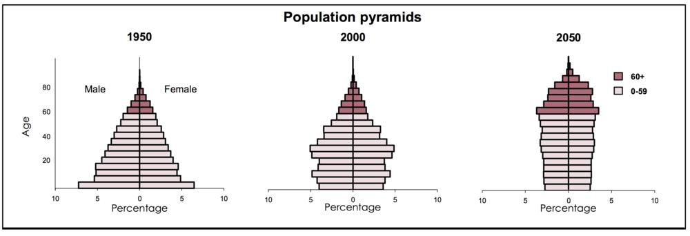 Source:Population Division, DESA, United Nations