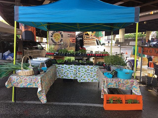 The sun is out!! We are under the JFX until noon! #baltimorefarmersmarket #fresh #produce #certifiedorganic #organic