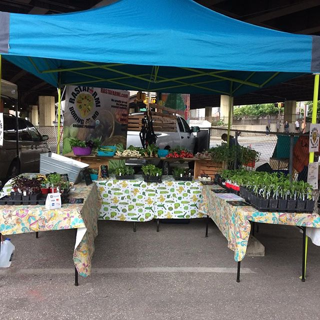 It's a little grey outside but it's not raining! Come see us at the JFX farmers market until noon!! #jfxfarmersmarket #baltimore #fresh #organic #produce #baltimorefarmersmarket