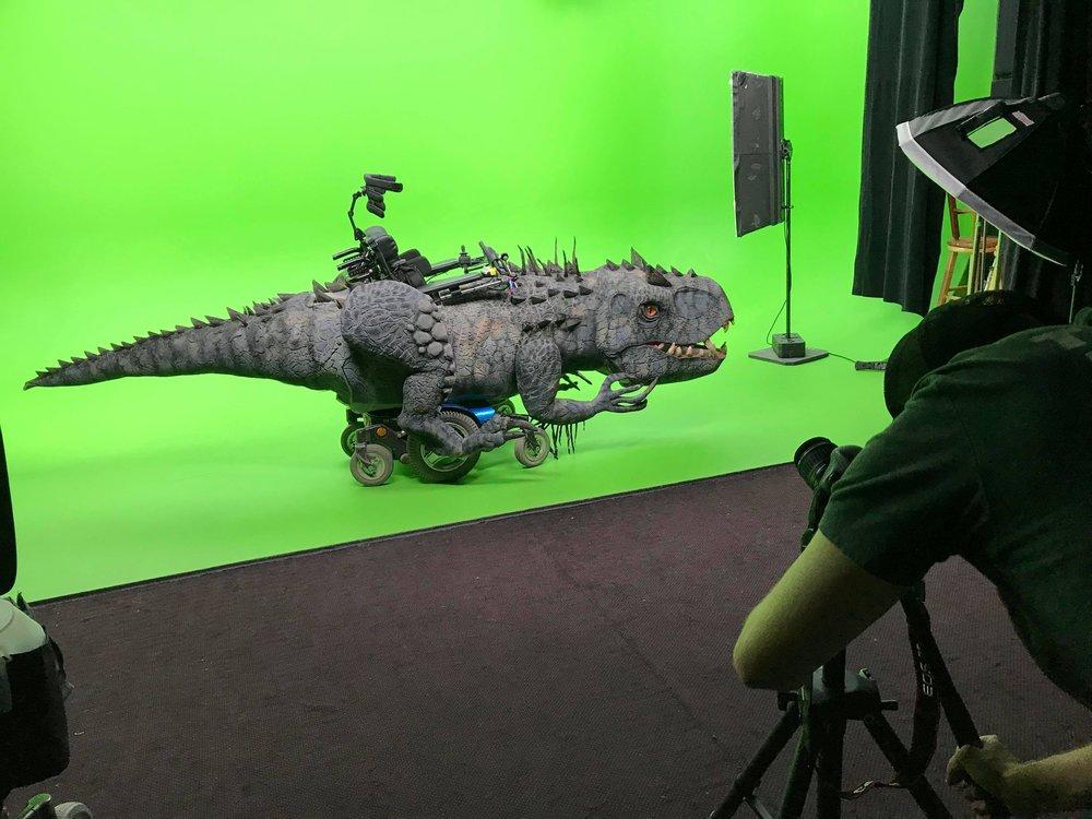 Rex new 2.jpeg
