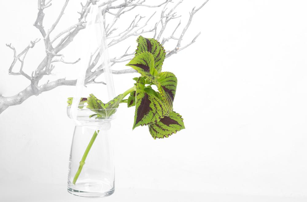 Hanging Vase 1.50
