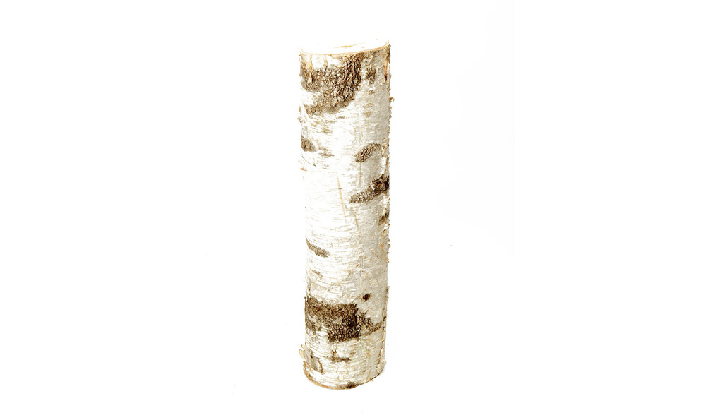 Birch Log (Various Sizes) 10-