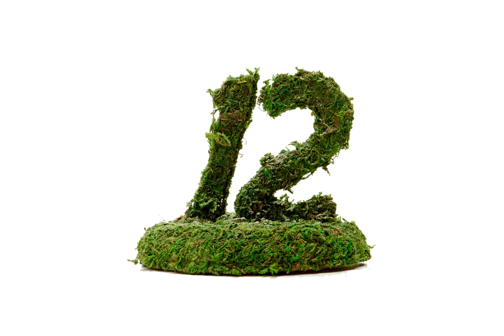 Moss Table Number 1.50-