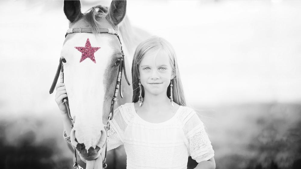 twinkle+horse-4.1.jpg