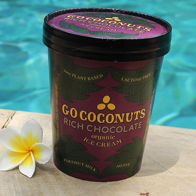 It's pool time! 🐬🌴 . . . . . #gococonuts #vegan #organic #plantbased #plantstrong #icecream #glutenfree #pooltime #ubud #umajatiretreat