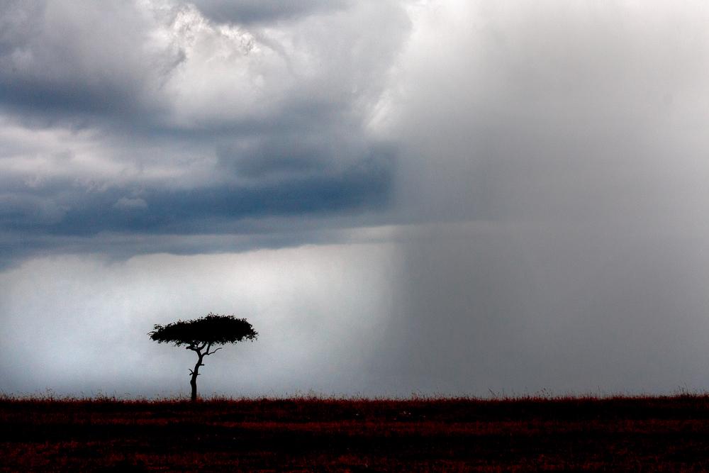 Mara rainstorm