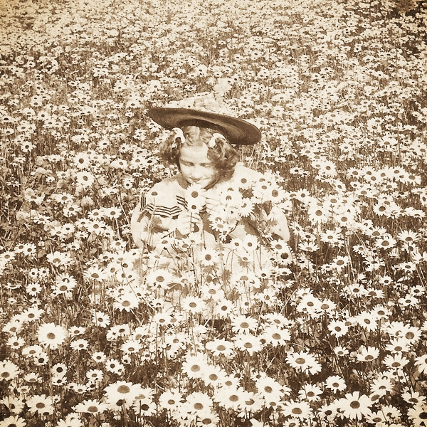 vintage_girl_in_daisy_meadow_by_hauntingvisionsstock.jpg