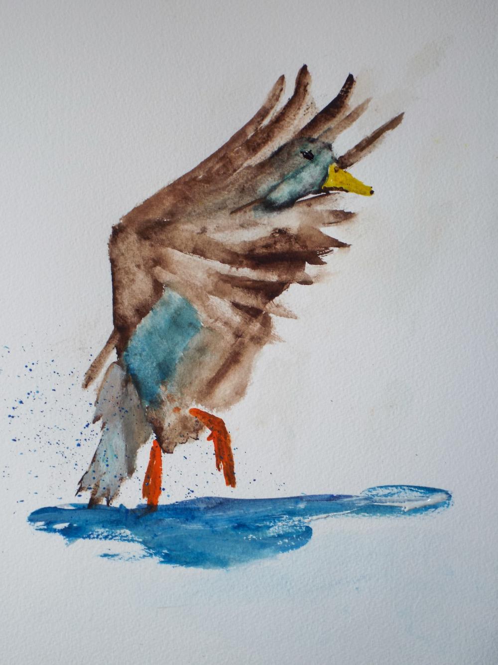 Duck Landing II