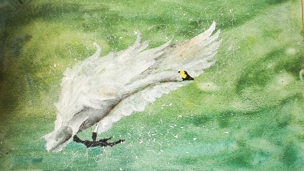 Swan Landing I