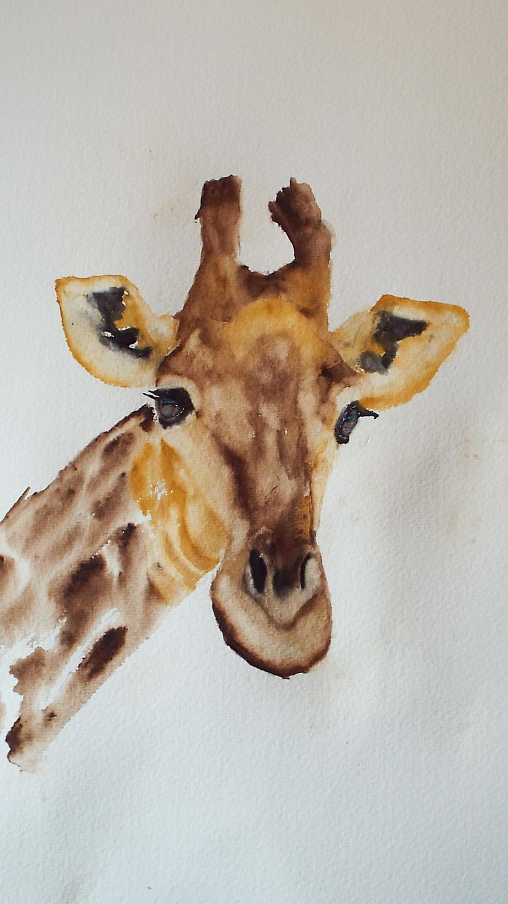 Giraffe Study I