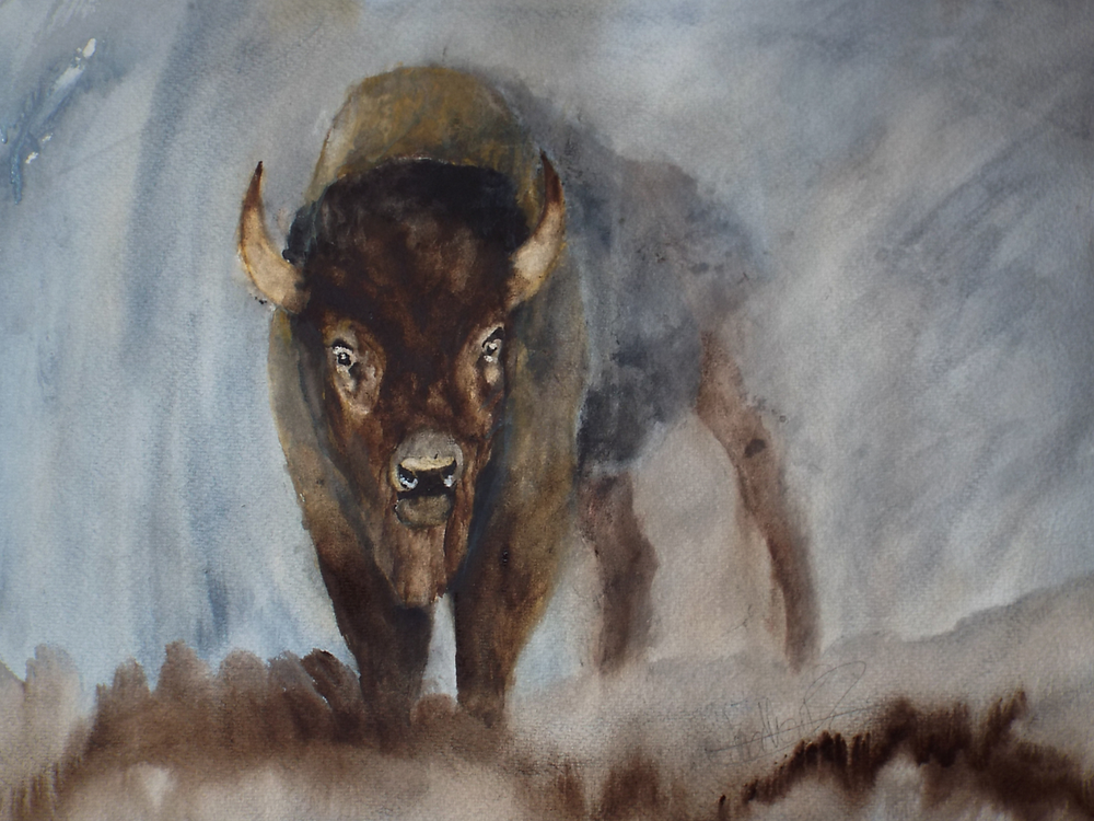 "Bison in Mist      Original Watercolour on paper    Dimensions 22""x30""     Contact For Price"
