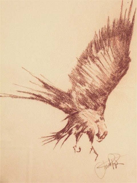 Bird of Prey Sketch II