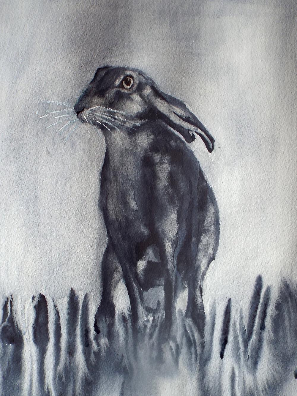 Hare I