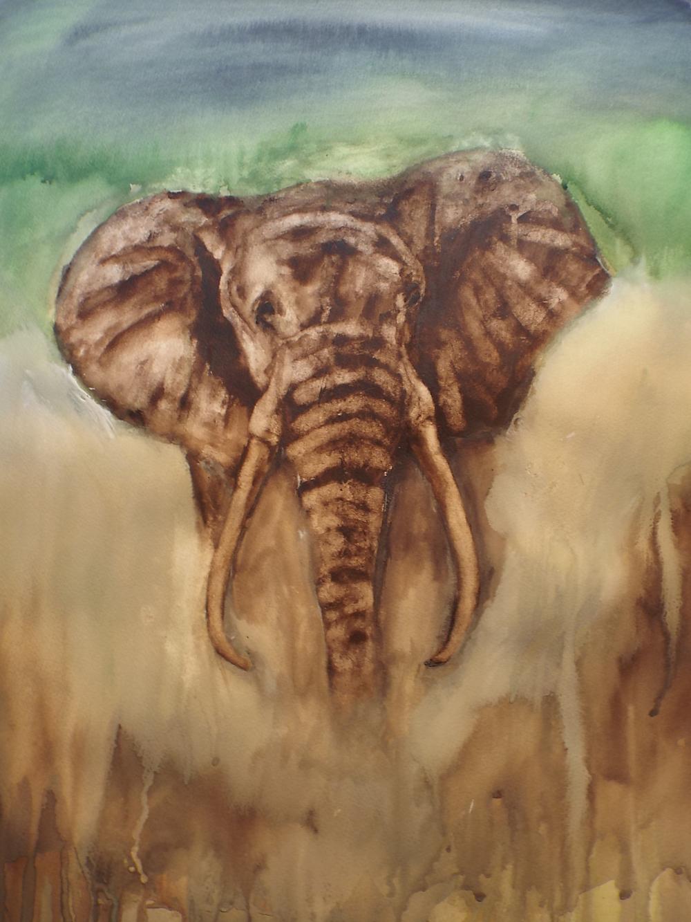 Elephant in Mist