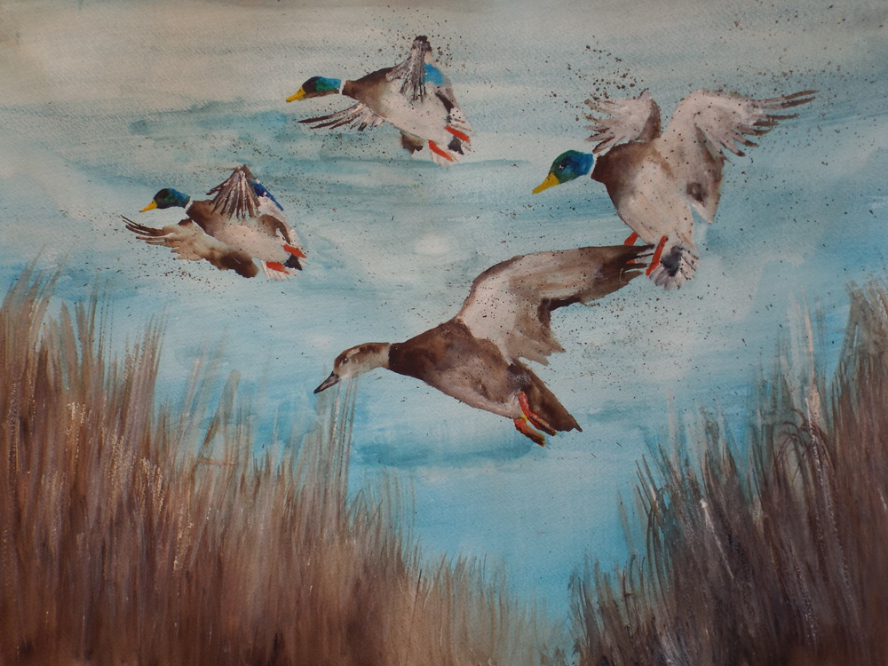 Mallards Flying  Sold