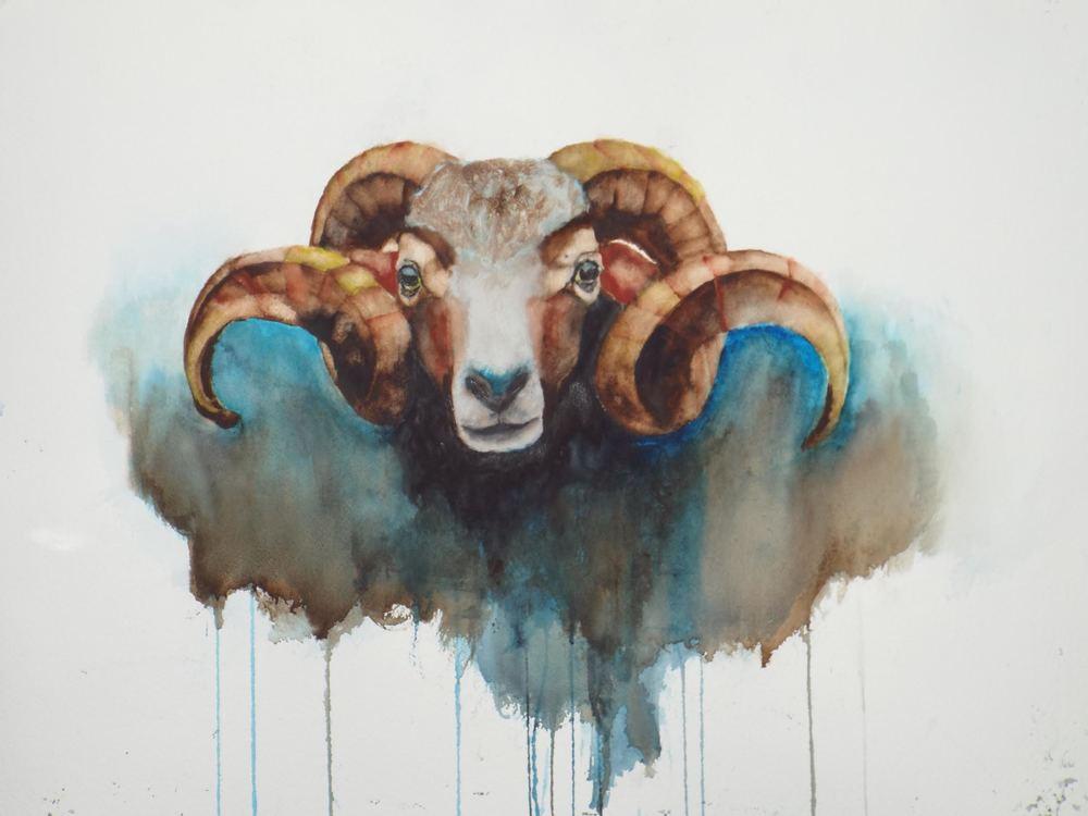 Ram  Sold