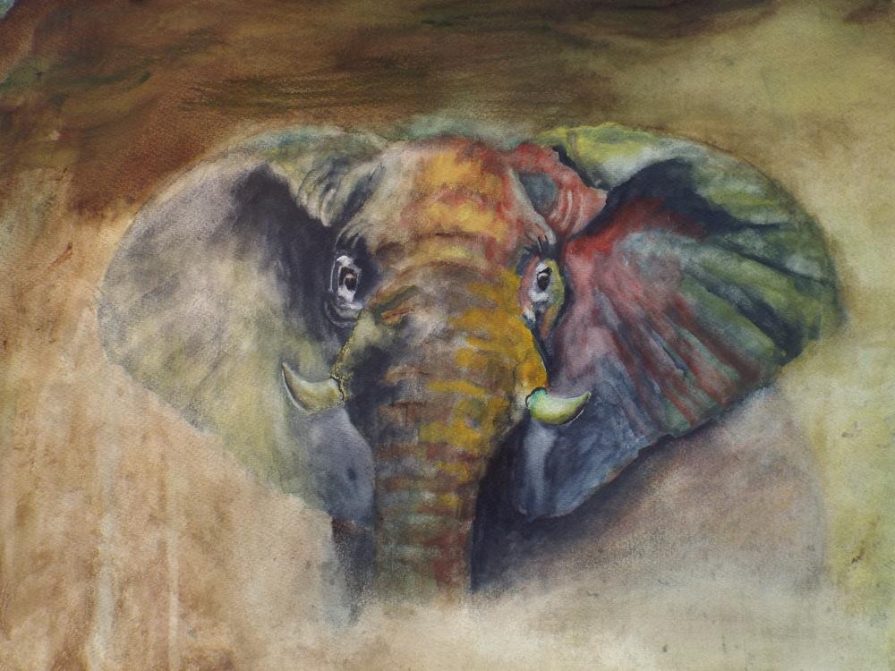 Elephant   Sold