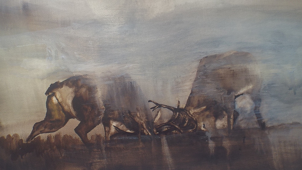 Stags Fighting in Mist
