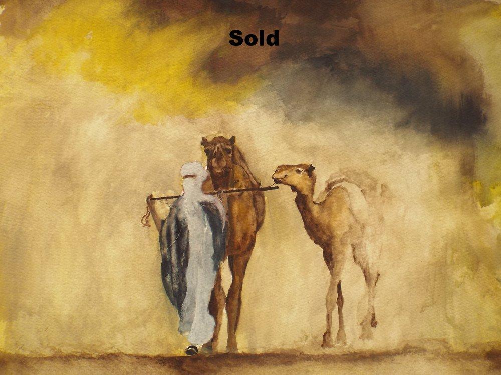 Desert IV Sold