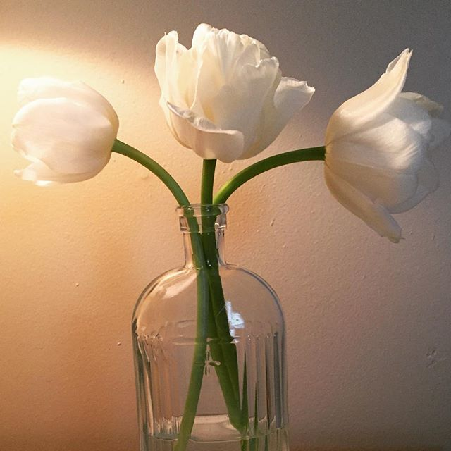 Night time simplicity. #bedside #table #tulips